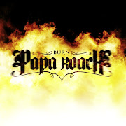 Papa Roach - Burn Lyrics I didn't know you were a fake papa roach burn