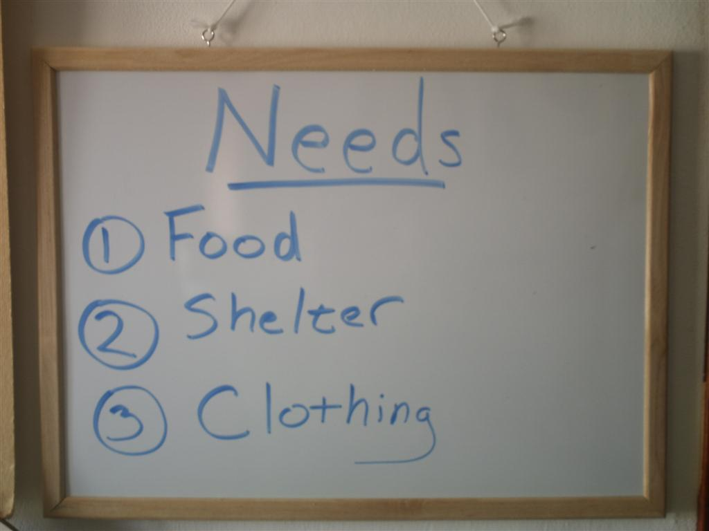 about humans basic needs