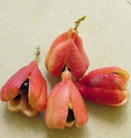 jamaican ackee, dailyfruits.blogspot.com, fruit health