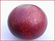 Camu Camu Fruit (Myrciaria dubia)