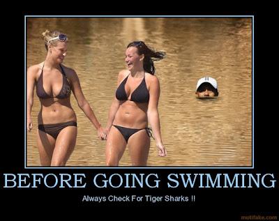 before-going-swimming-tiger-shark-swim-babes-bikini-sexy-chi-demotivational-poster-1263544553.jpg