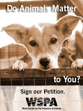 Help Stop Animal Suffering