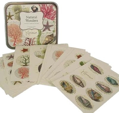 Natural Wonder Stickers with coral and sealife