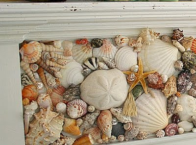 Creating a seashell mosaic or the second life of a for Seashell mosaic art