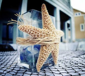 starfish on vase