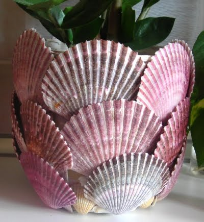 planter with scallop sea shells