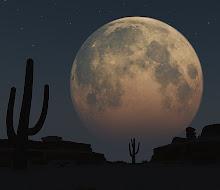 Desert Moon Doulas