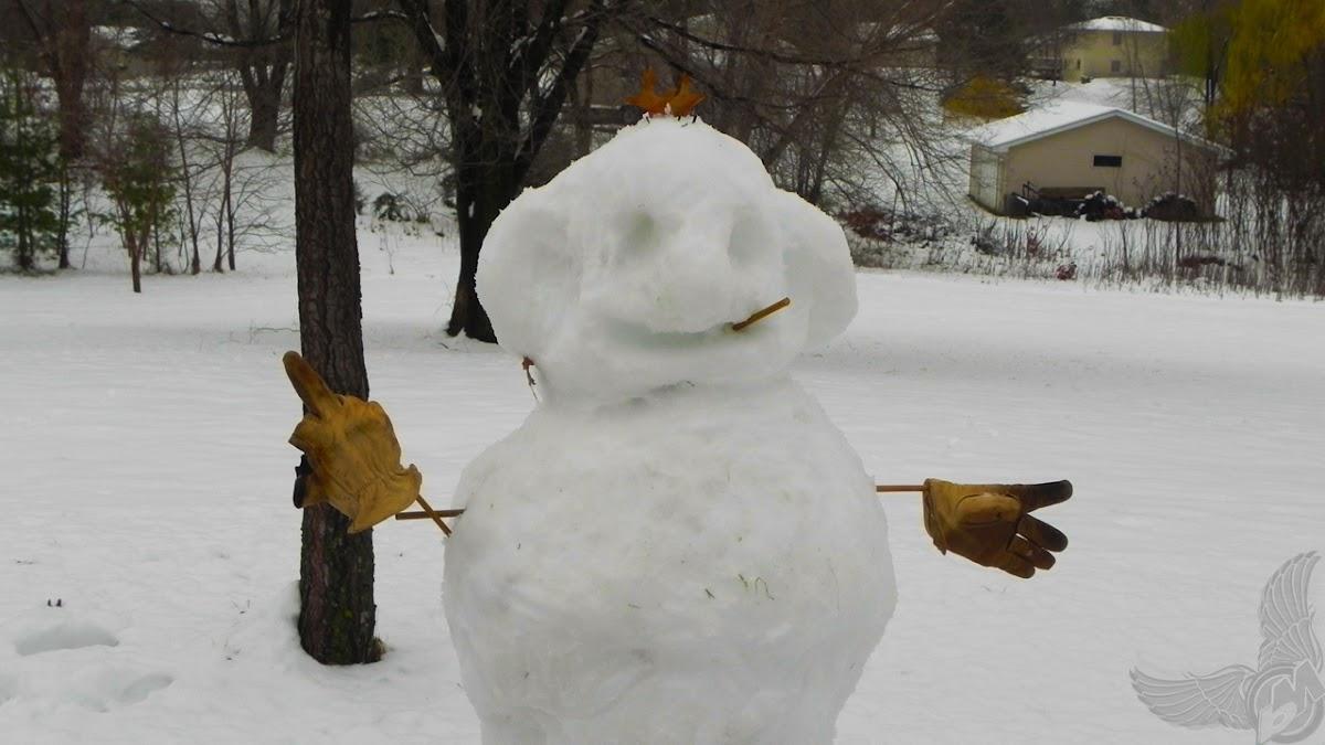 f***ing snowman   ole