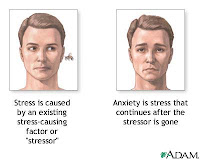 I thought this an interesting picture demonstrating  stress  & anxiety.