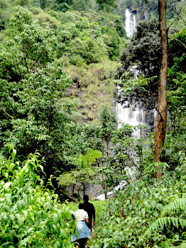 Water Falls..
