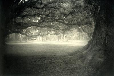 contemporary essay photography