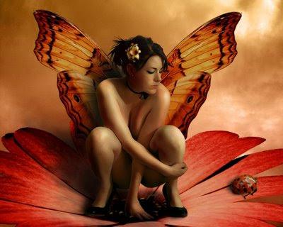 fairy,fada,vermelha,momentos,asas