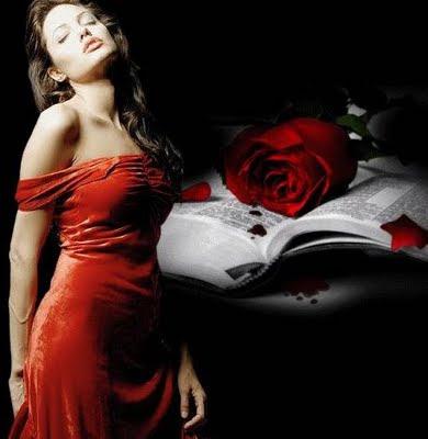 angelina jolie,flores,rosa vermelha,palavras