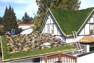Green House Telhado Verde