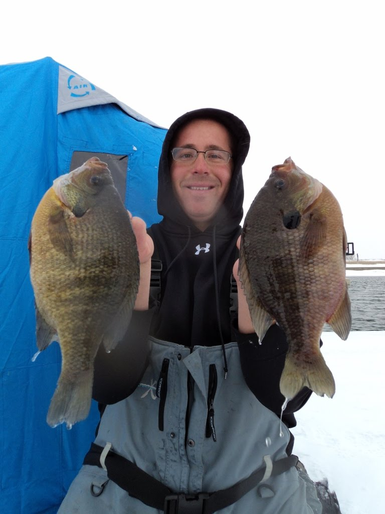 Herman brothers blog boone and crocket bluegills for Ice fishing bluegill
