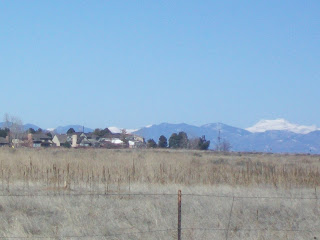 field with rocky mts in back ground