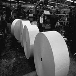 Paper Industry Insights