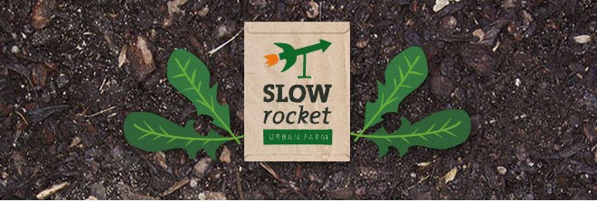 Slow Rocket Urban Farm