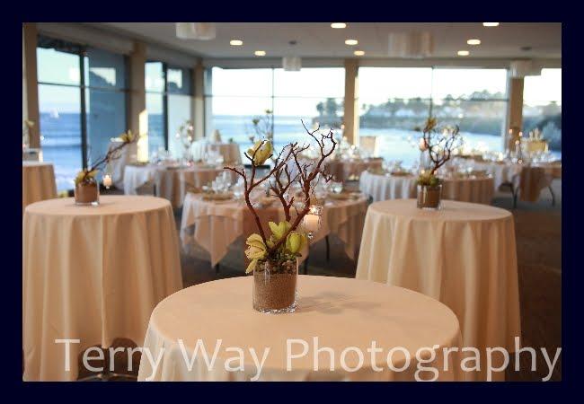 Weddings On The Beach In Santa Cruz At Dream Inn Photos By Terry Way