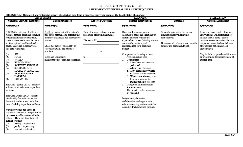 Care Plan Template. Patient Care Plan Template Plan Template