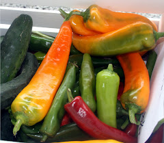 Fry peppers, sweet peppers, hot peppers