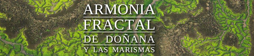 Armonia fractal de Doñana y las marismas