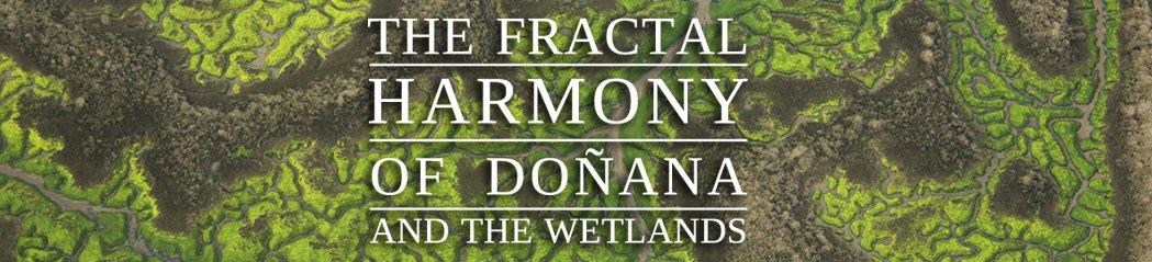fractal donana