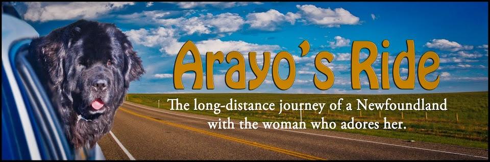 Arayo's Ride