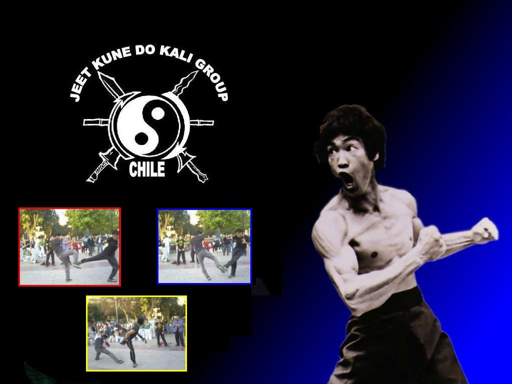JEET KUNE DO KALI GROUP CHILE