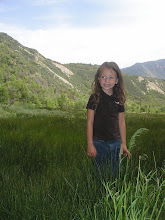 Belle in Nephi Canyon