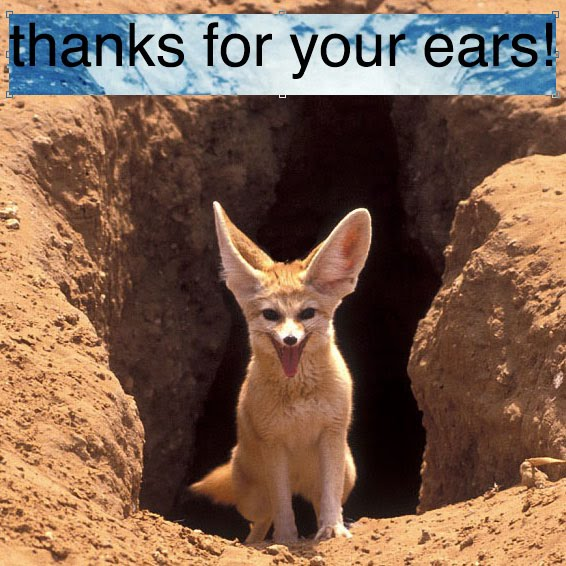 thanks for your ears!
