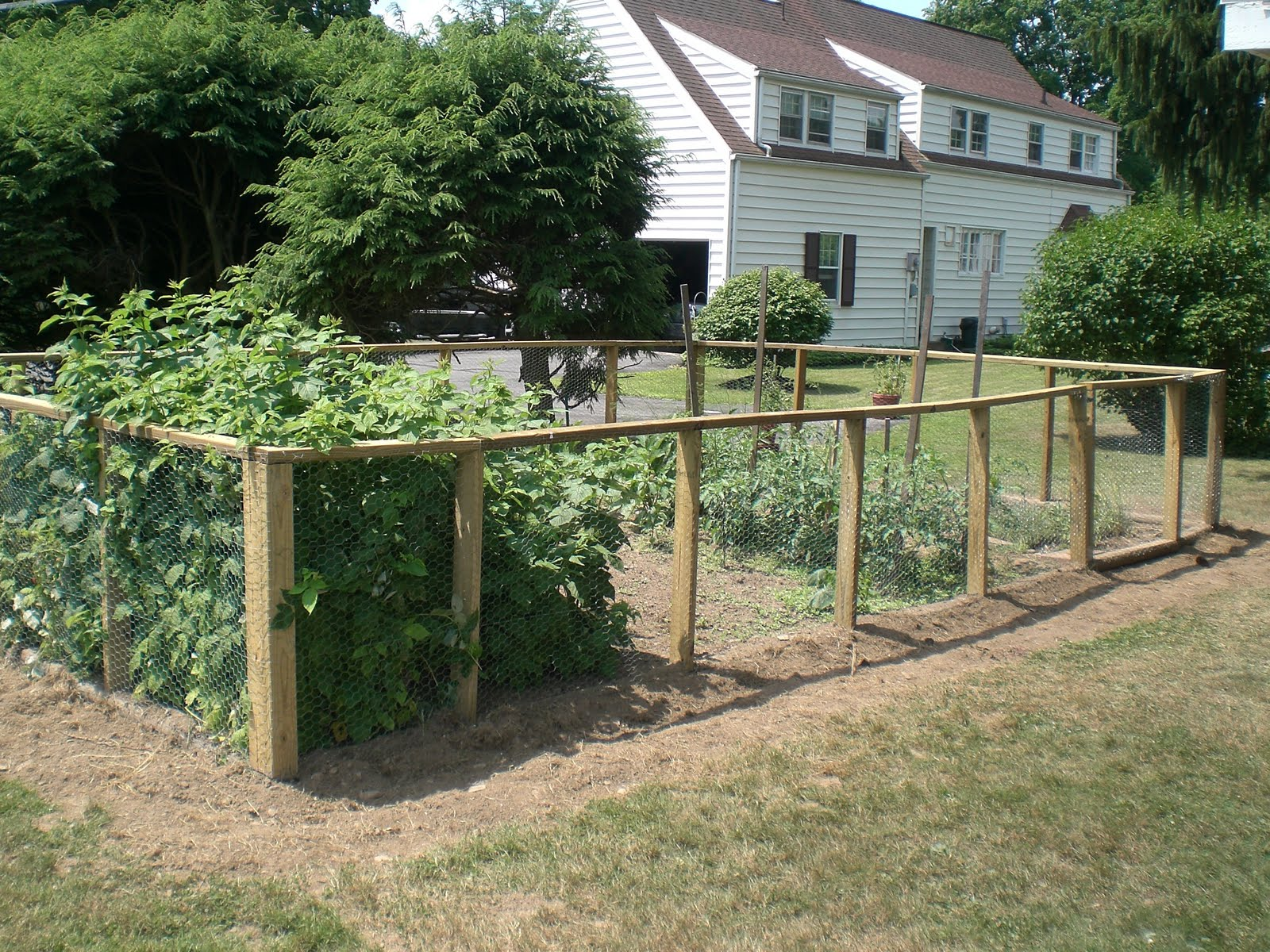 Vegetable garden fence ideas photograph vegetable garden f for Simple fence plans