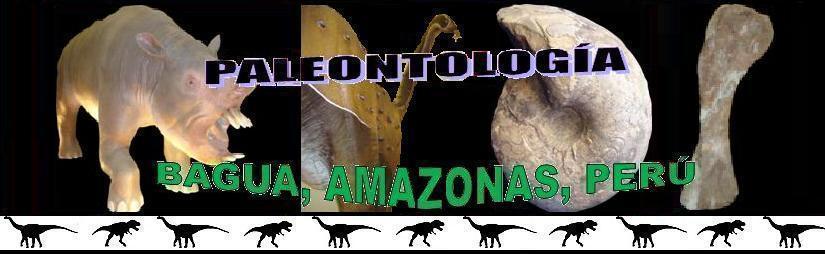 Paleontología de la Provincia de Bagua
