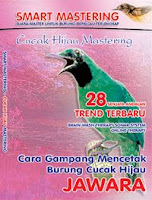 CUCAK HIJAU MASTERING