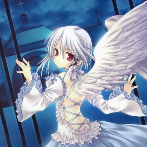 Ficha de Kurimiya Shatima y Kuri Shatima(en realidad son la misma persona) Angel