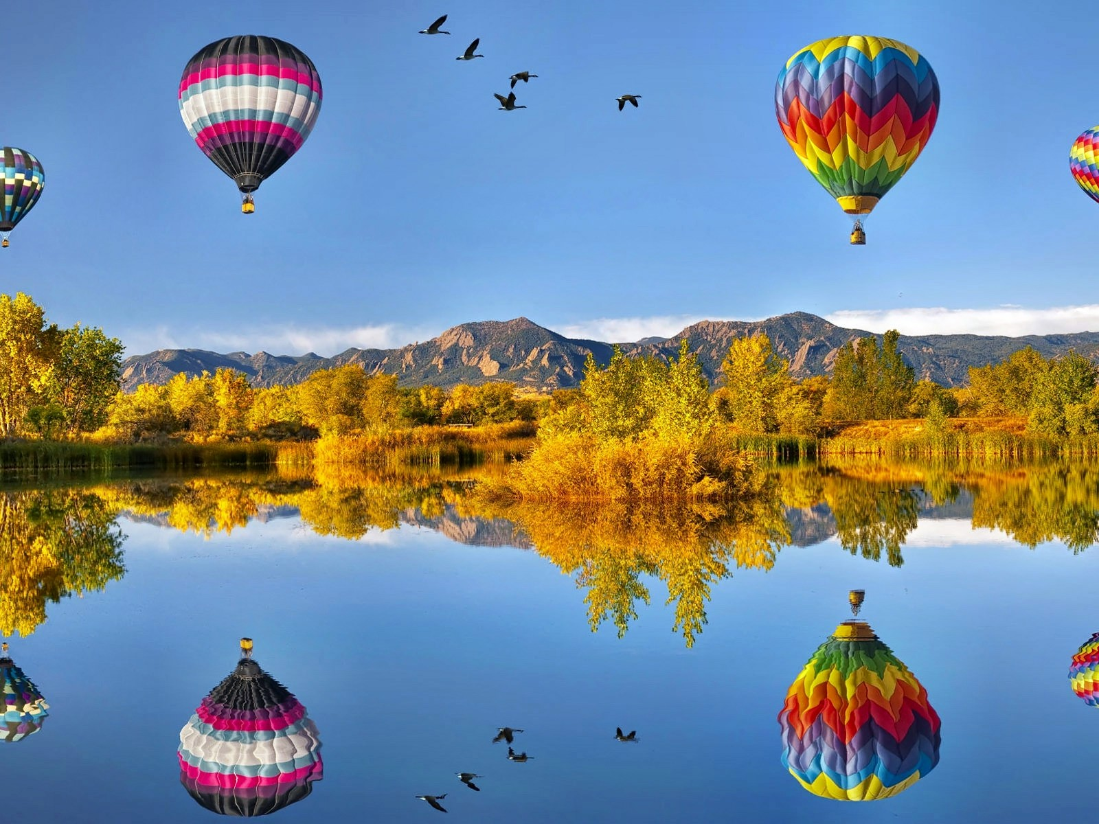 21 Awesome air balloon wallpapers | Curious, Funny Photos ...