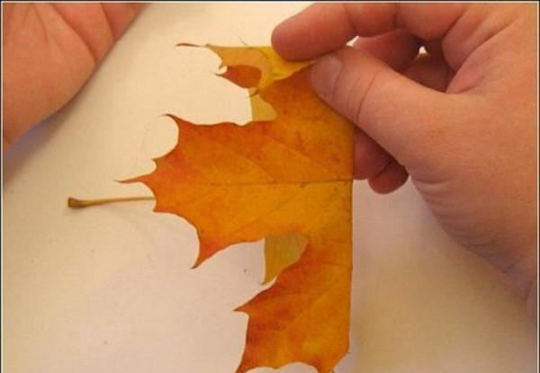 How to make a rose from maple leaf