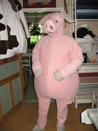En gris jag sytt