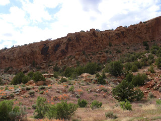 General area of Petroglyphs, DNM