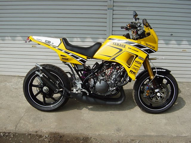 Race Motorcycle: Yamaha TDR 250