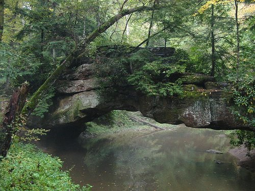 Rock Bridge in the Red River Gorge Kentucky.