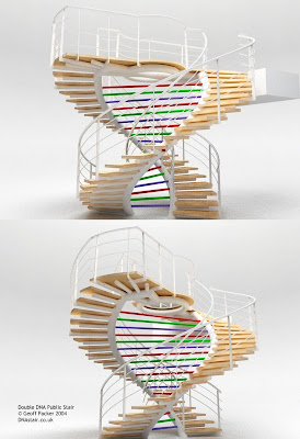 Double DNA Staircase