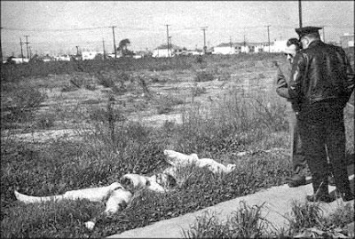 BLACK DAHLIA Corpse Found on Norton Avenue