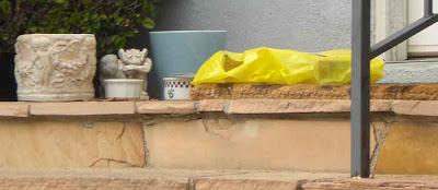 Porch Gargoyle - Santa Monica