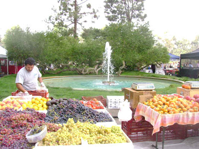 Look at that Produce ! - Century City Farmers' Market