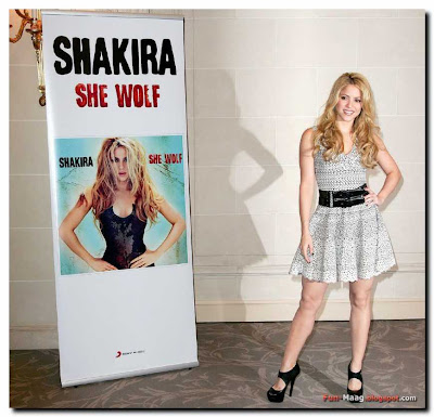 shakira my hips dont lie