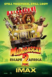 Baixe imagem de Madagascar 2 (Dublado) sem Torrent