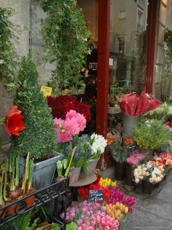 [EU09_LEN0449_M-FB~Florist-in-Ile-St-Louis-Paris-France-Posters.jpg]