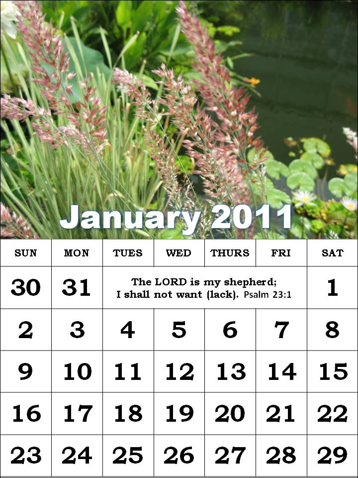 January Pictures For A Calendar 2011. January 2011 Calendar with