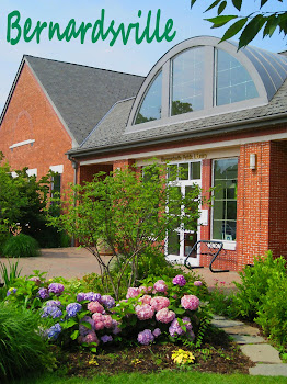 Visit Our Library in Bernardsville, NJ, USA